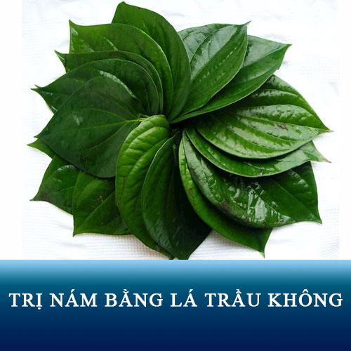 cach-tri-nam-bang-la-trau-khong