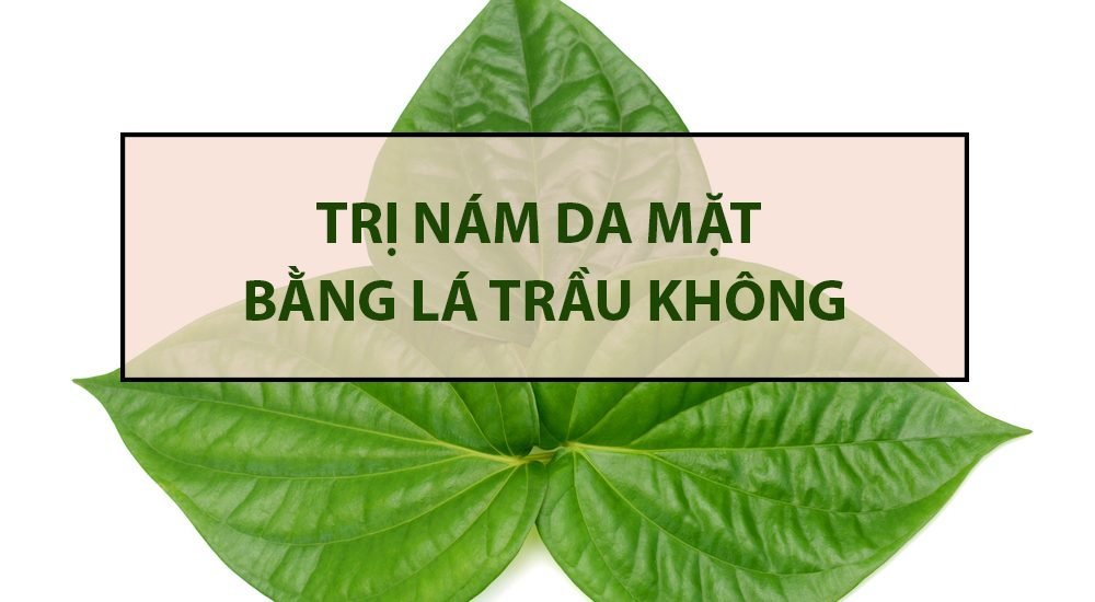 tri-nam-bang-la-trau-khong-1